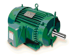 MOTORS Low Voltage & Medium Voltage